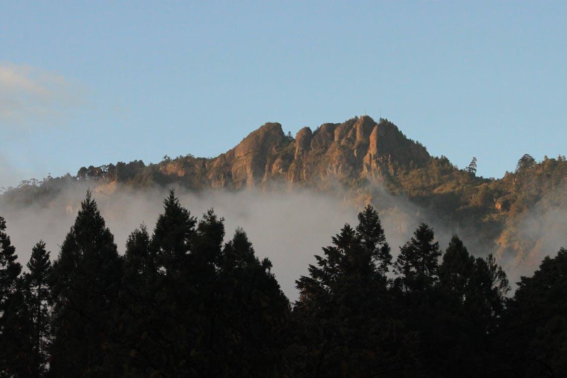 kabut, pegunungan, taiwan