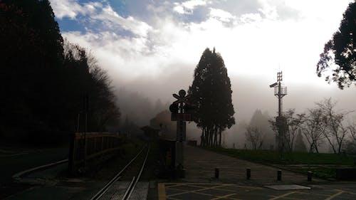 Бесплатное стоковое фото с голубое небо, деревья, железная дорога, лес