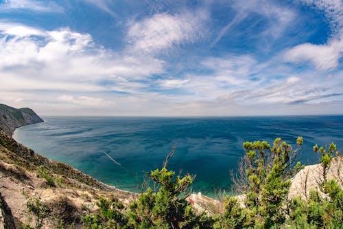 Immagine gratuita di acqua, cielo, erba, estate