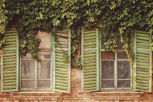 açık hava, ahşap, ahşap pencere, bina içeren Ücretsiz stok fotoğraf