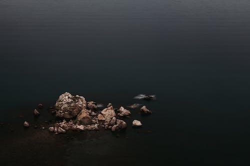 Gratis arkivbilde med daggry, elv, hav, havkyst