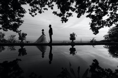 Foto d'estoc gratuïta de aigua, arbres, blanc i negre, boda