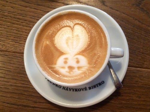 คลังภาพถ่ายฟรี ของ กระต่าย, กาแฟ, กาแฟในถ้วย, ความคิดสร้างสรรค์