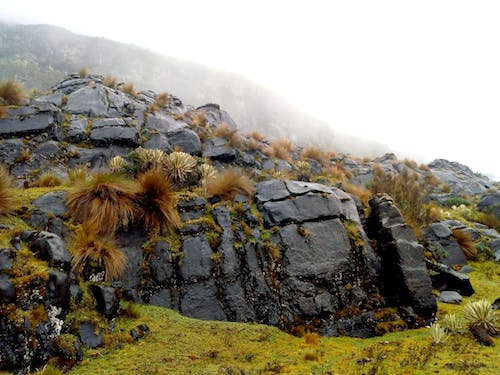 Free stock photo of foggy morning, landscape, mountain, rocks