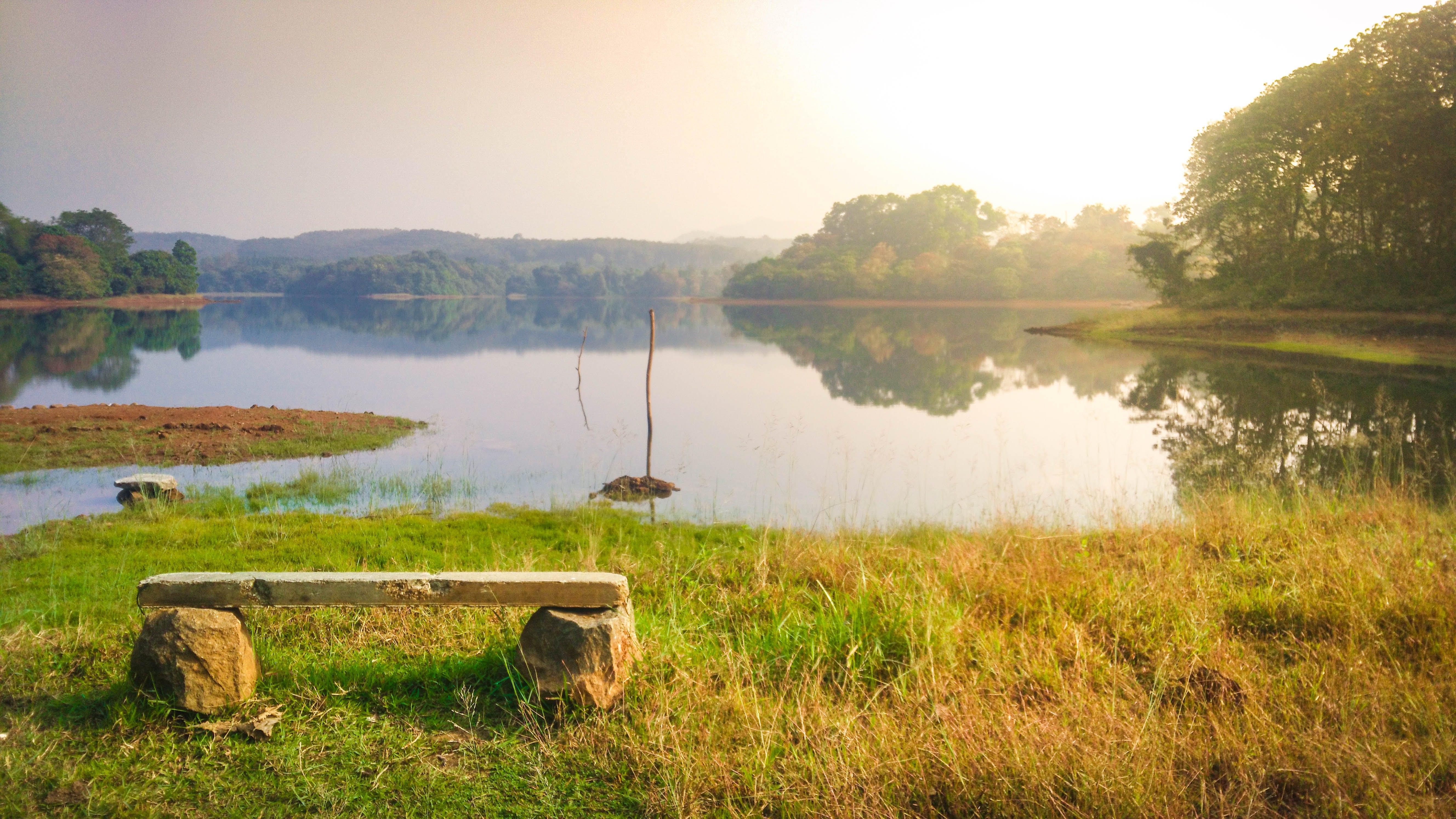 反射, 朝の太陽, 束, 水の無料の写真素材
