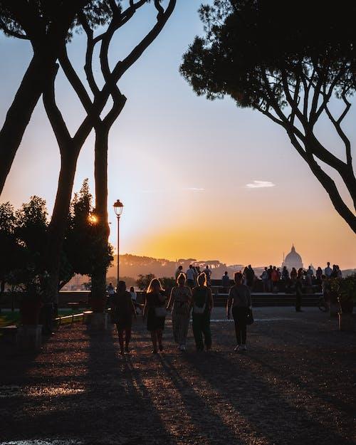 人, 假日, 公園, 剪影 的 免费素材照片