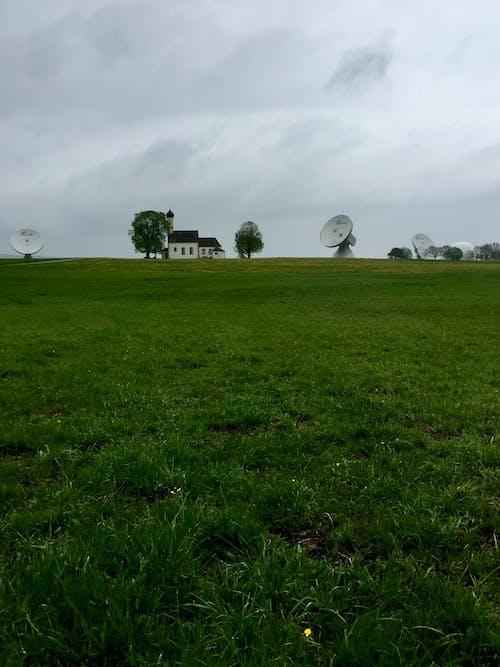 Imagine de stoc gratuită din câmp, departe, distanță, iarbă