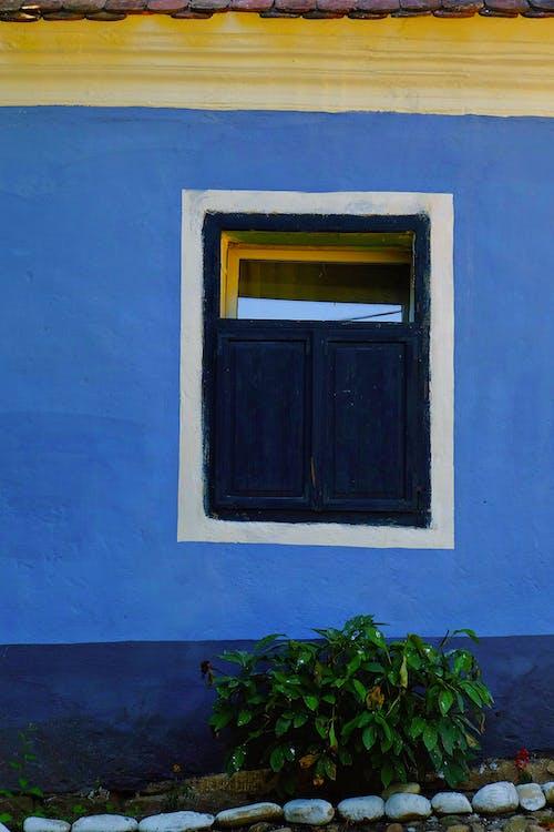 Základová fotografie zdarma na téma architektura, barva, denní světlo, doma