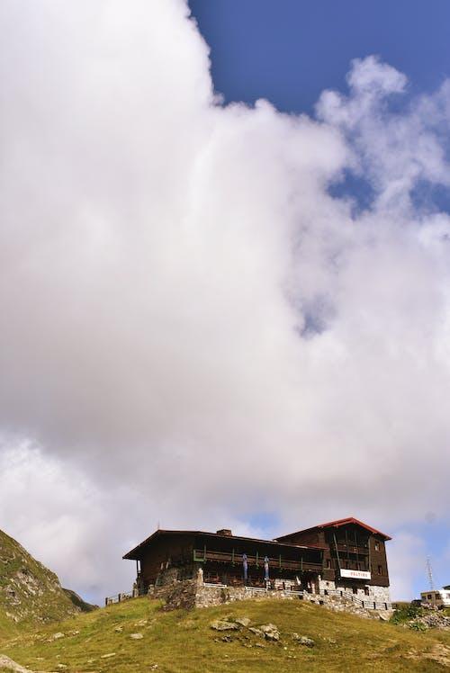 Foto profissional grátis de ao ar livre, arquitetura, árvore, casa