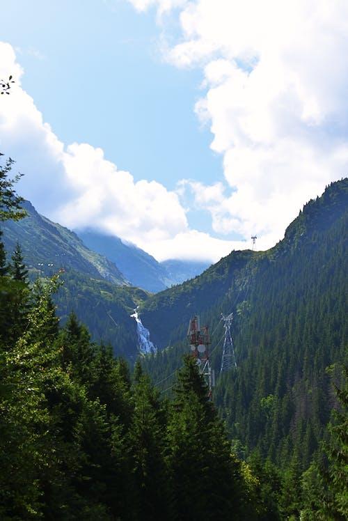 Foto d'estoc gratuïta de a l'aire lliure, aigua, arbres, caminada