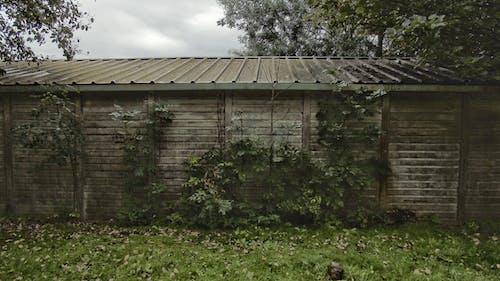 Free stock photo of building, building exterior, grass, storage