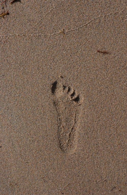 ada, adım atmak, arka fon, ayak içeren Ücretsiz stok fotoğraf