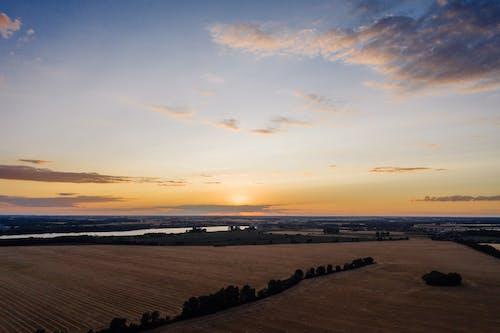 Photos gratuites de aérien, agriculture, authentique, blé