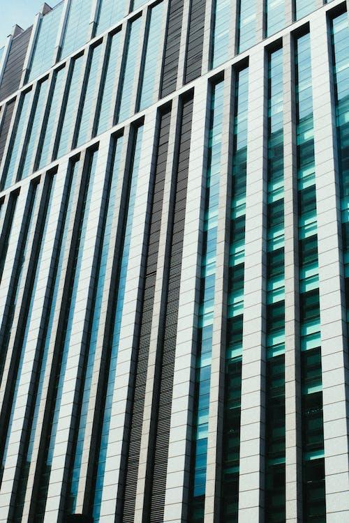arquitectura, edifici, edifici alt