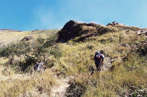 健行, 天性, 徒步旅行, 戶外 的 免费素材照片