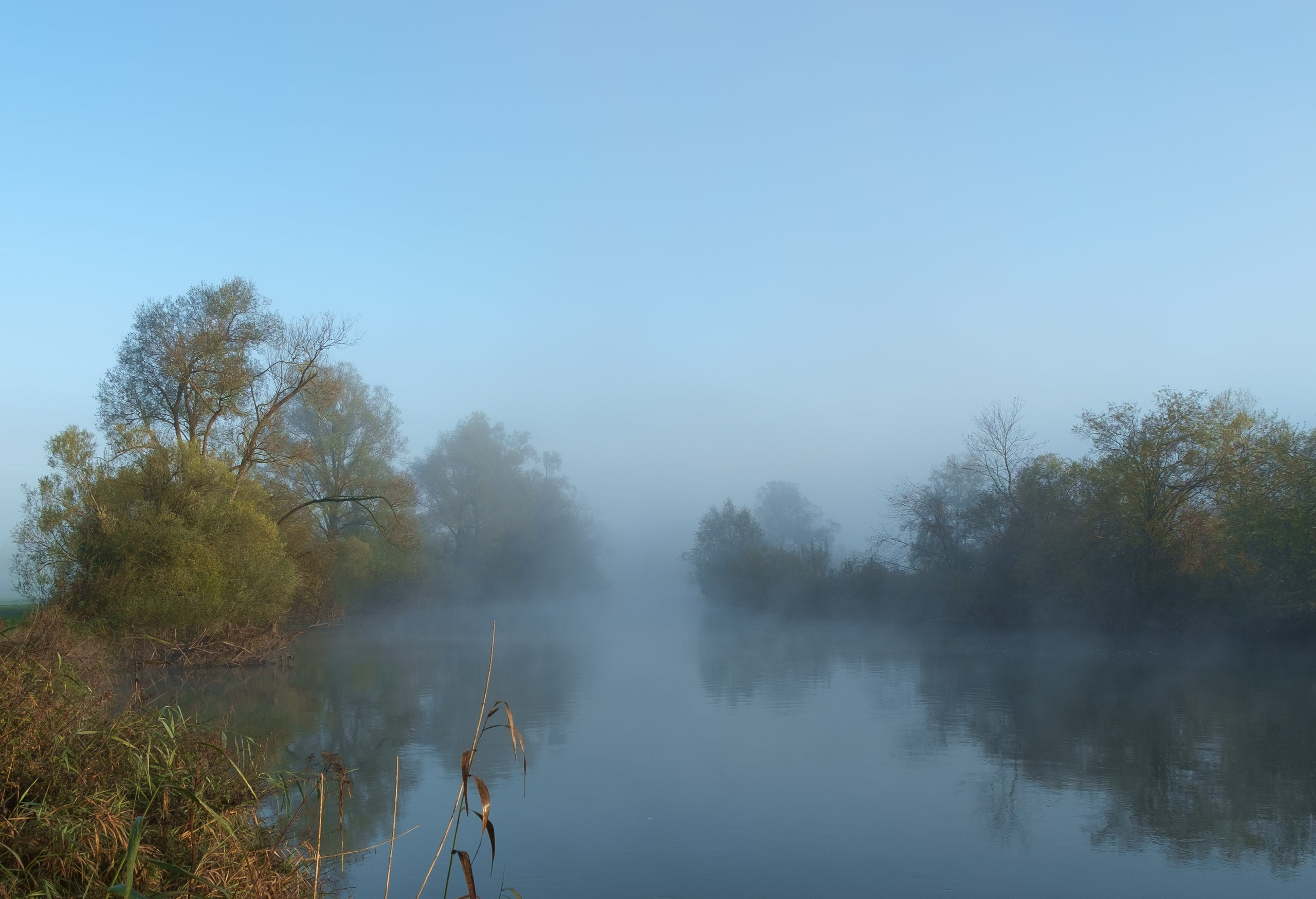 Free stock photo of fog, mystical, river