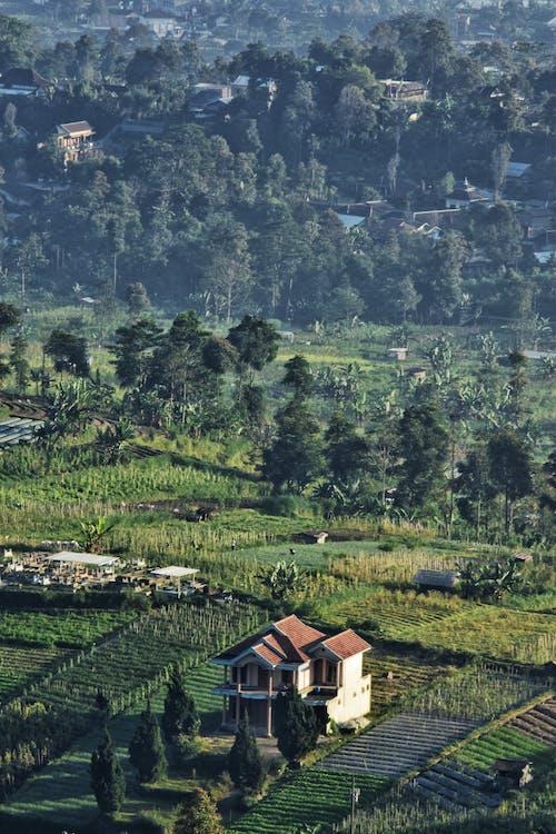 Gratis lagerfoto af hjem, hus, Indonesien, landskaber