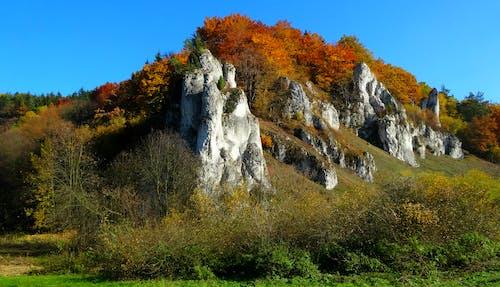 Základová fotografie zdarma na téma kameny, podzim, přírodní krása