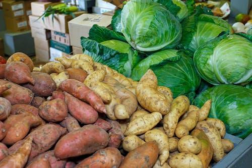 agbiopix, 市場, 捲心菜, 甘藷 的 免費圖庫相片