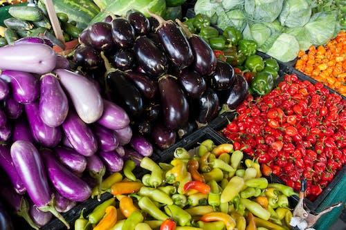 agbiopix, 可口的, 市場, 捲心菜 的 免費圖庫相片