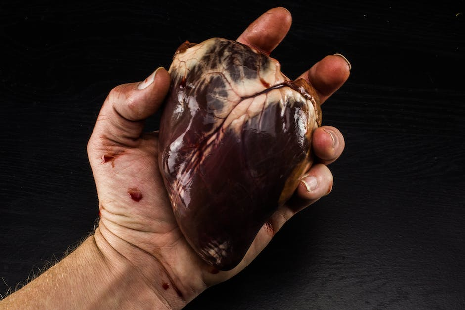 Free stock photo of blood, bloody heart, heart in hand