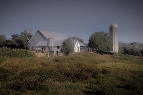 古董, 景觀, 穀倉, 筒倉 的 免費圖庫相片
