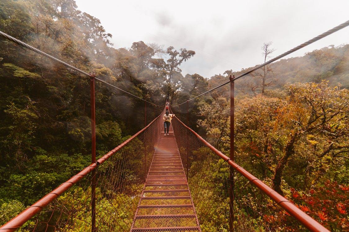 Person Walking on Hanging Bridge