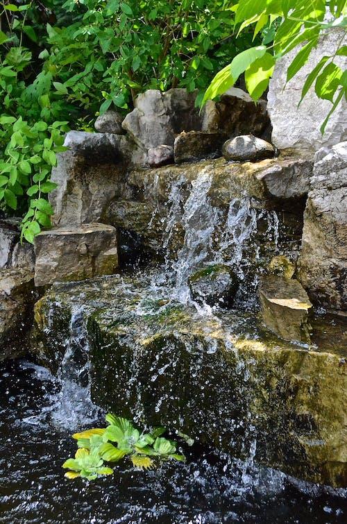 Бесплатное стоковое фото с вода, водопад, деревья, красивый вид