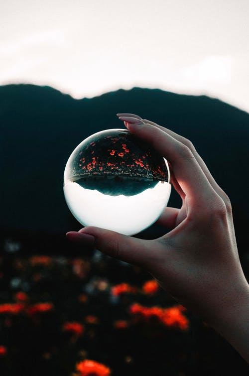 Photo of Person Holding Clear Ball