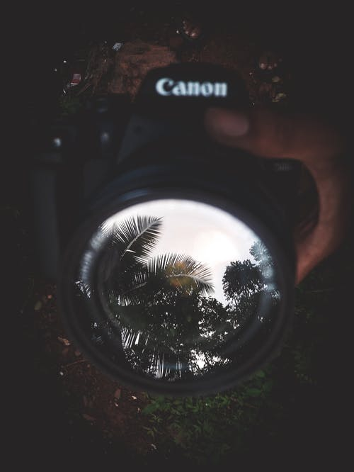 Selective Focus Photography of Black Canon Camera