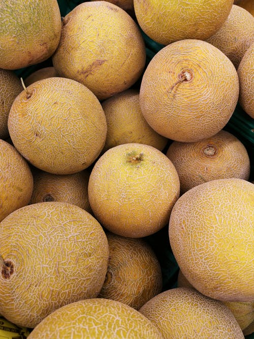 Fotobanka sbezplatnými fotkami na tému ananásový melón, čerstvý, detailný záber, farba