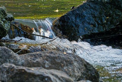 คลังภาพถ่ายฟรี ของ กระแสน้ำ, กลางแจ้ง, การถ่ายภาพ, การท่องเที่ยว
