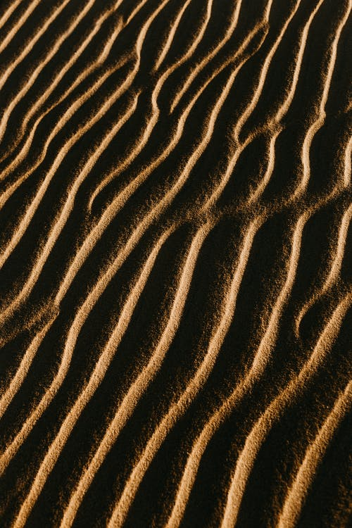 Brown Sands