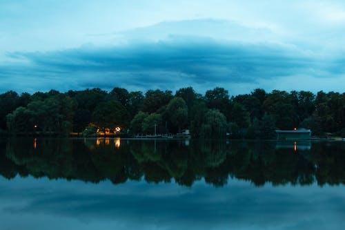 Darmowe zdjęcie z galerii z brzeg jeziora, błękitne niebo, drzewa, fotografia przyrodnicza