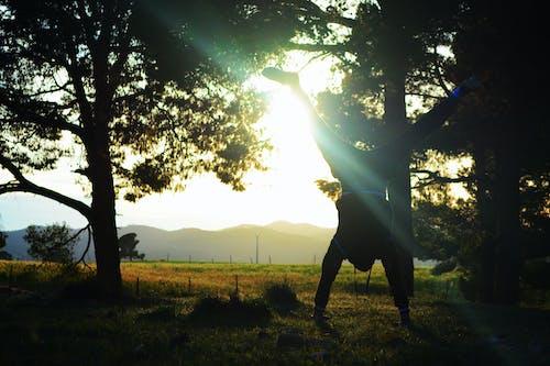 Free stock photo of ain tindamine, algeria, ali meddah, Beautiful sunset