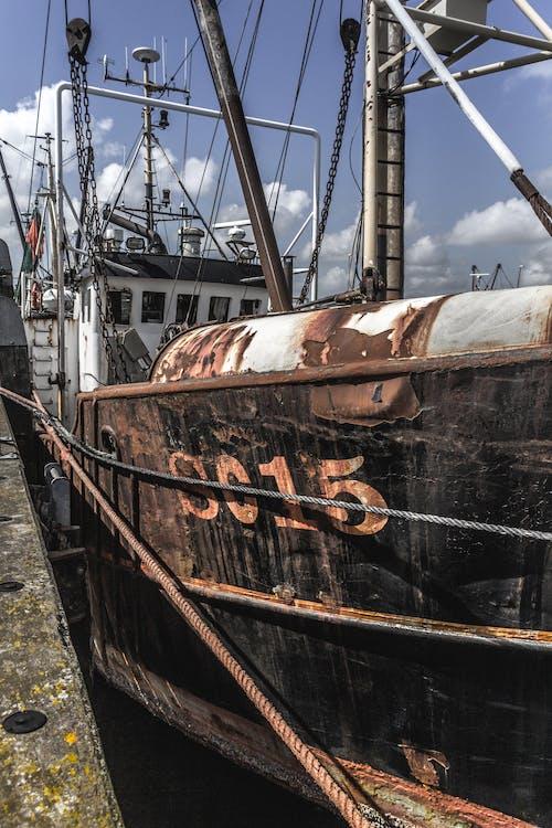 Foto profissional grátis de cais, Dinamarca, envio, navio pescador