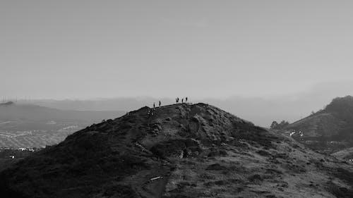 Photos gratuites de colline, collines, gens, sfo