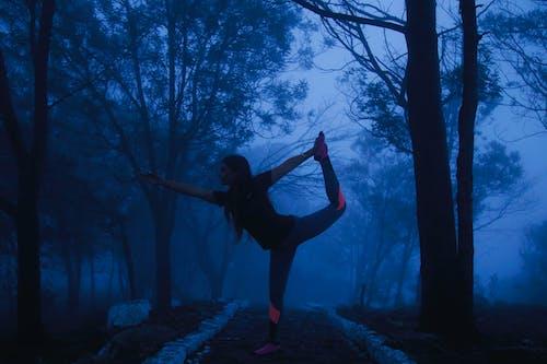 Fotobanka sbezplatnými fotkami na tému cvičenie, India, inštruktor jogy, joga