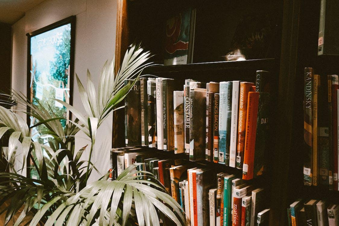 knihkupectví, knihovna, knihy