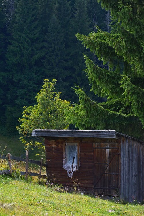 Бесплатное стоковое фото с деревья, деревянный, домик, за городом