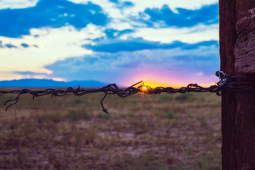 Free stock photo of barbed wire fence, blue, colorado, dawn