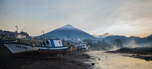 Boats on Shore during Day