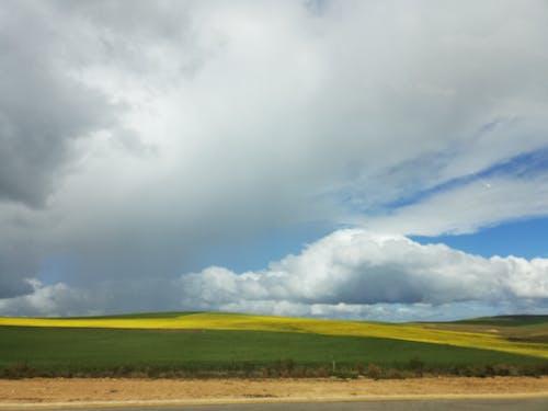 Ingyenes stockfotó felhők, repce mező, sárga mező, termőföld témában