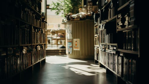Základová fotografie zdarma na téma akcie, knihkupectví, knihovna, knihy