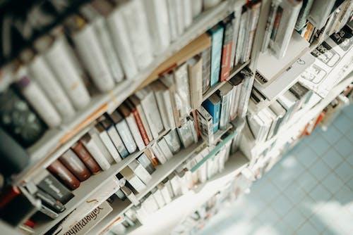 alan derinliği, bulanıklık, Edebiyat, geniş açılı çekim içeren Ücretsiz stok fotoğraf