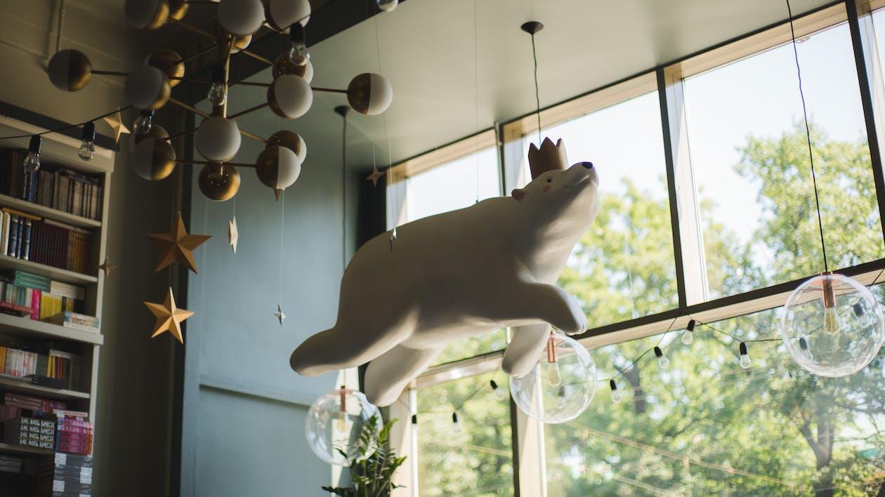 ablak, alacsony szögű fényképezés, állat