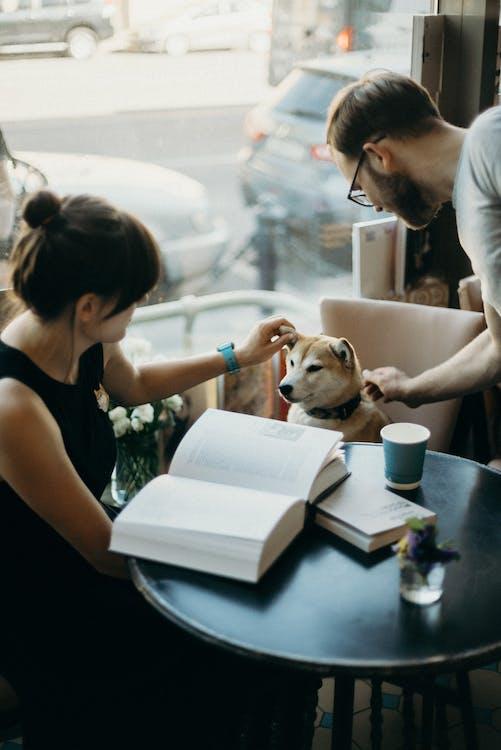 adults, amant dels animals, amistat