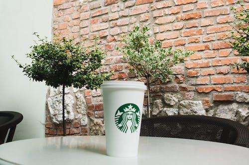 Бесплатное стоковое фото с кирпичная стена, одноразовая чашка, растения в горшках, сиденье