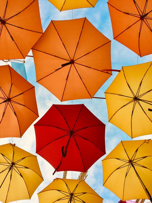 Low-Angle Photo of Umbrellas