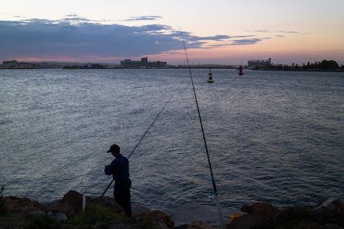 Free stock photo of fishing, harbour, man